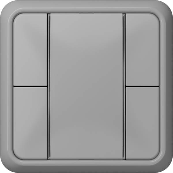 JUNG_CD500_grey_coloured_F50_2-gang