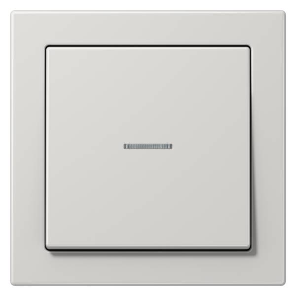 JUNG_LS_Design_light_grey_switch-lense
